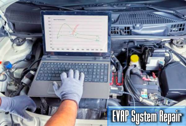how much does it cost to repair the EVAP System