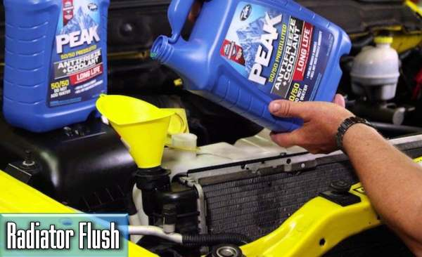 the average prices of the car radiator flush