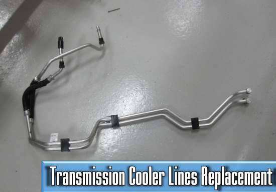 the average price of transmission cooler lines replacement